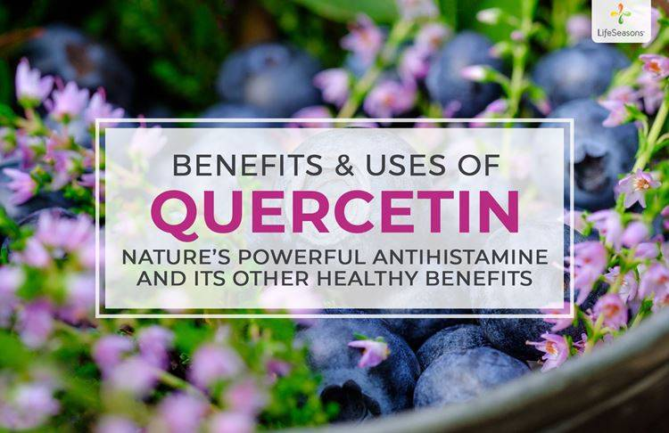 What is Quercetin? [Benefits & Uses]
